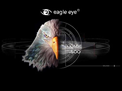 Разработка сайта Eagle Eye history Incorporated